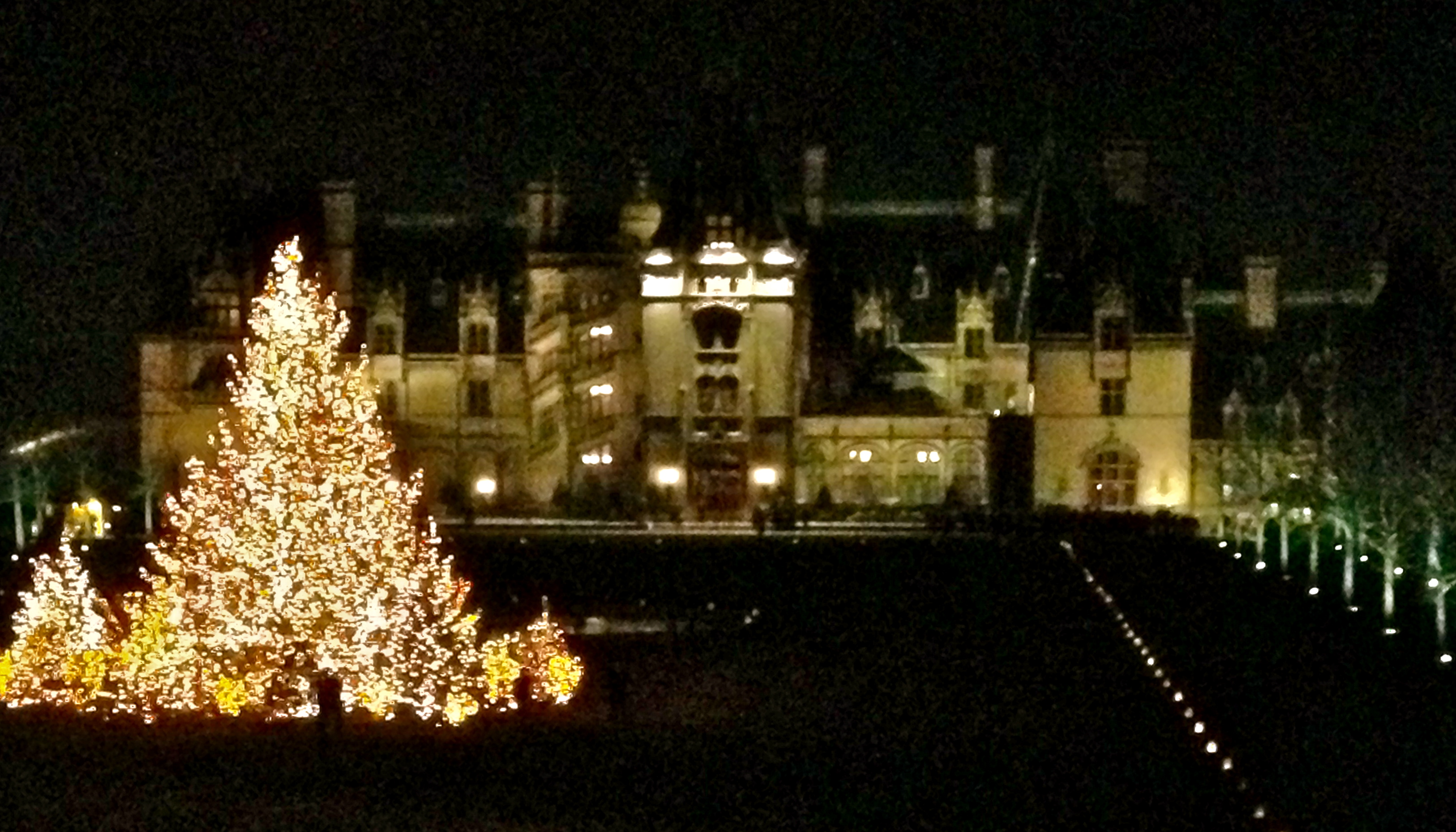 out of town: christmas at the biltmore | Off the Eaten Path